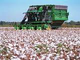 Equipamento para agricultura algodoeira