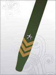Correia DA-219 Militar Estrela
