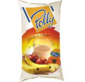 Bebida Láctea Polly - Salada de Frutas