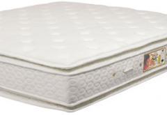 Gold Star Pillow Pocket Super Luxo Soyamboo