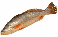 Peixe Inteiro