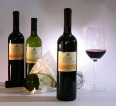 Vinho Cabernet Sauvignon