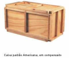 Caixa padrao Americana
