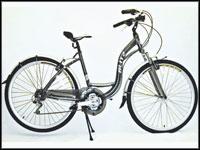 Bicicleta Comodo 700
