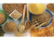 Cereais de trigo