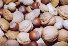 Composições de defesa e estimulação para tratamento das sementes