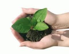 Biotech Plus Fertilizante Organomineral Classe A