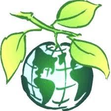Biotech Raiz Fertilizante