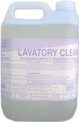 Lavatory Cleaner