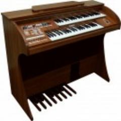 Orgão Eletrônico Tamye New Dream Special (Natural)