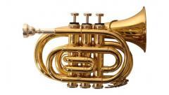 WPT GD - Trompete Pocket