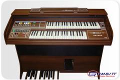 Havana Órgão Eletrônico