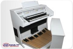 Verona Órgão Eletrônico