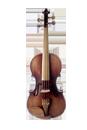 Violino Madeira Exposta EVB