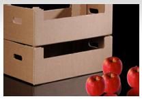 NPSA 4061 - Industrial Embalagens