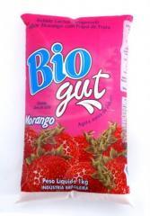 Bebida Láctea Morango Bio Gut 1Kg