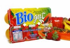 Bebida Láctea Morango/Salada de Frutas Bio Gut