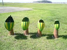 Cacauzinho c/ Tronco de coqueiro