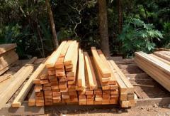 Ripa de madeira