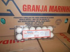 Ovos Brancos e vermelhos selecionados e
