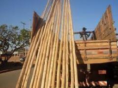 Mourões em madeira