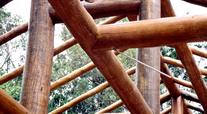 Vigamentos em madeira