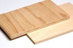 Compensados em madeira