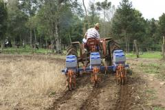 Sowing systems