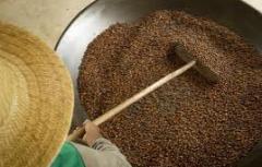 Guaraná grãos