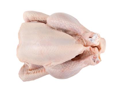 mdm-chicken-suppliers