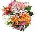 Bouquet de Flores Especiais