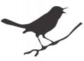 BioBase para pássaros