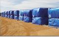 Cottonpex  - é produzido em ráfia de polietileno de alta densidade, plastificado nas duas faces.