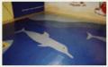 Piso em Placas da HAIAH é usado em áreas internas para academias de ginástica, brinquedotecas, vestiários, sala de aula infantil, berçários.