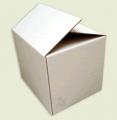Caixa Normal com Abas Transpassadas