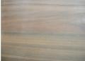Angico Preto -  Anadenanthera macrocarpa (Benth.) Brenae