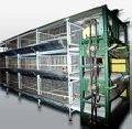 Baterias de gaiola para avicultura.