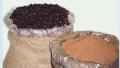 Guaraná (Paullinia cupana H.B.K.)