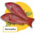 Peixe Vermelho