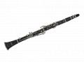Clarineta WCLM35
