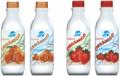 Iogurte com Polpa de Fruta - Tradicional