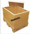 Caixa Exportação
