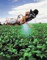 Herbicida Flumyzin