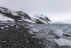 Solo da estação brasileira na Antártica está contaminado