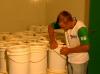Estiagem compromete a produção de mel e causa prejuízos no Piauí