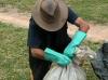 Governo faz campanha para recolher agrotóxicos obsoletos