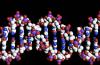Cientistas usam DNA sintético para armazenar arquivos digitais