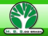 Madeireira Base Sólida do Brasil Ltda., Pinhais