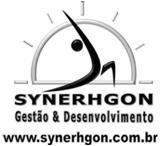 Synerhgon Gestão & Desevolvimento, Ltda, São Paulo