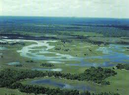 Encomenda Pantanal Mato Grosso
